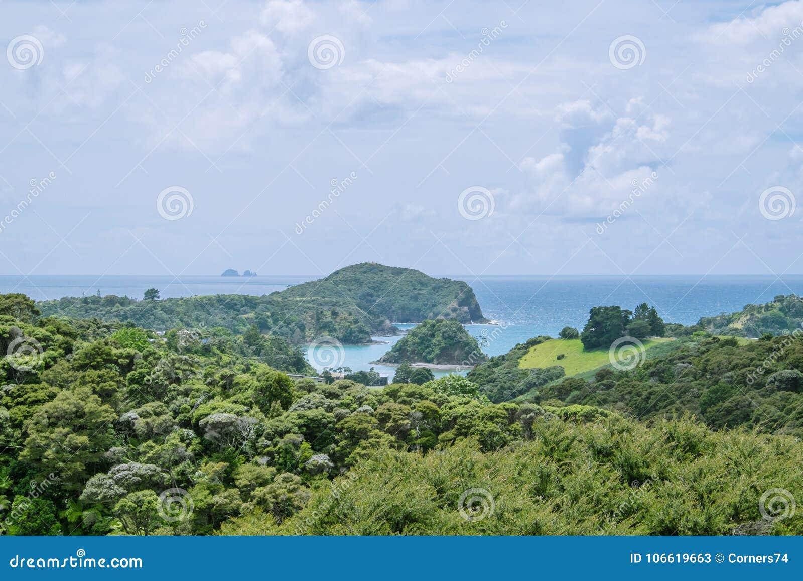 La visión sobre arbusto al puerto de Tutukaka y a los pobres Knights las islas,