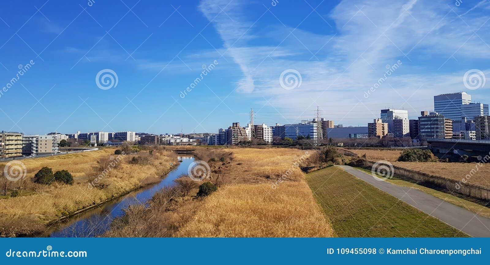 La vista del área de las residencias en Japón observó suburbio de la forma