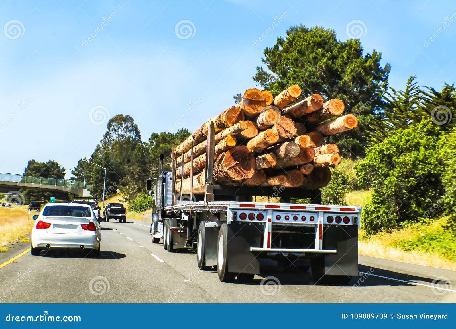 La vista posterior de registrar semi el camión cargó con los registros grandes que viajaban en la carretera con otros vehículos