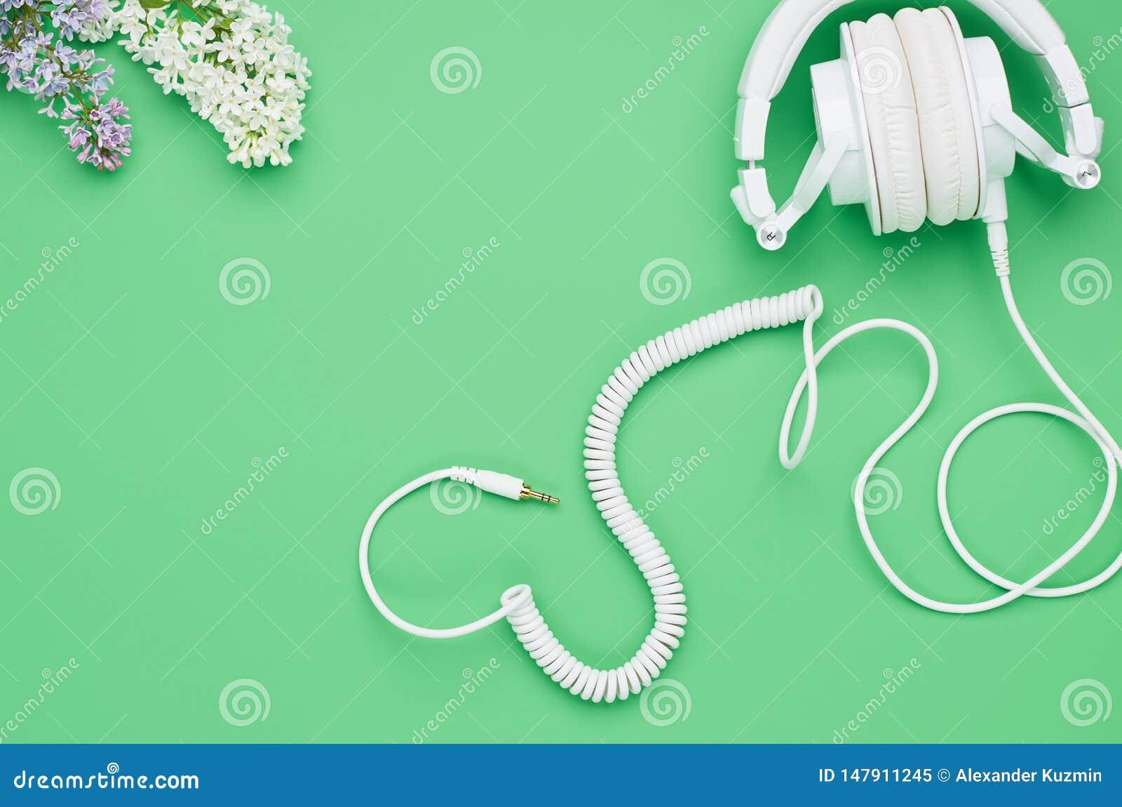La vista superior de la tabla de un ni?o adolescente, auriculares de la composici?n florece en fondo verde claro