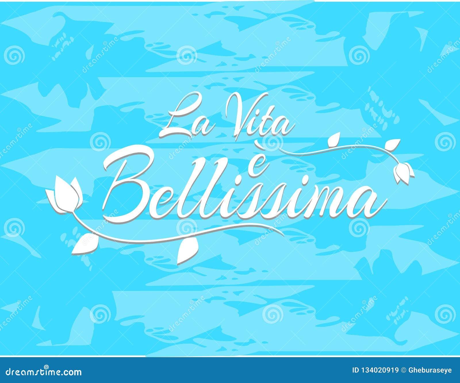 La Vita Di Frase è Bella In Italiano Illustrazione Di Stock