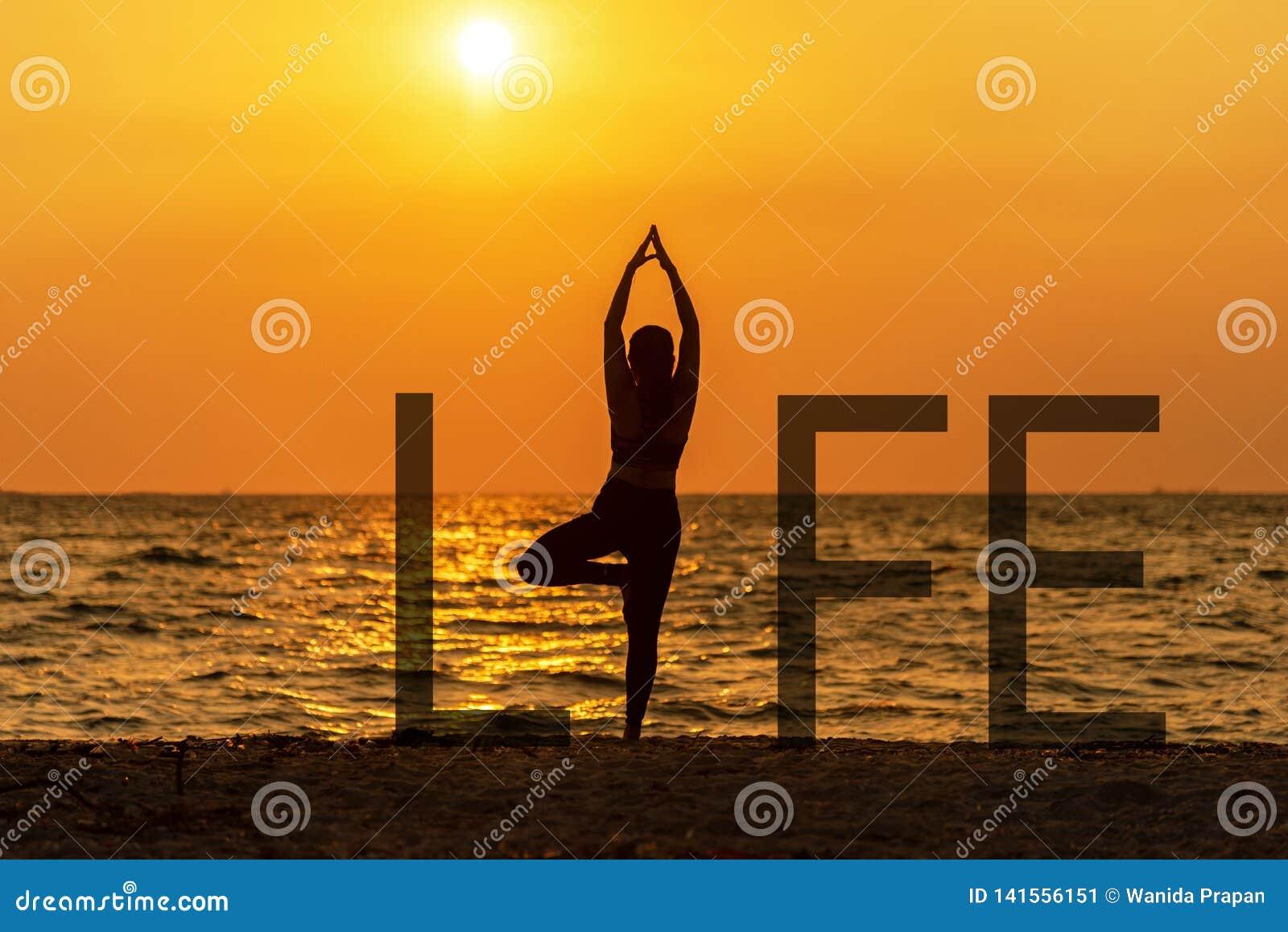 La vitalité de paix de femme d esprit de la vie d esprit de yoga de méditation d équilibre, extérieur de silhouette sur le couche