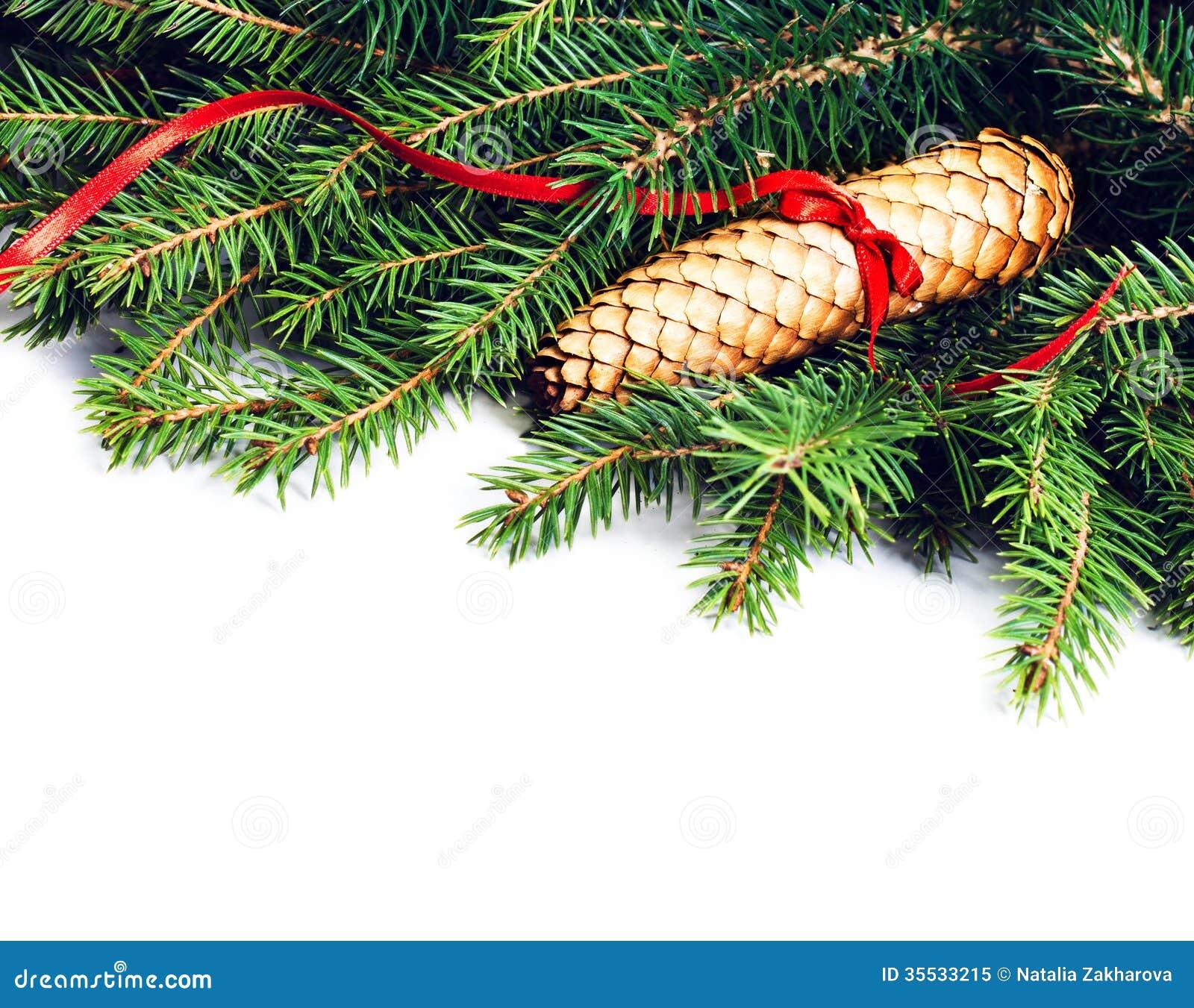 La vue de no l avec la d coration de branche et de no l d for Branche de sapin deco noel