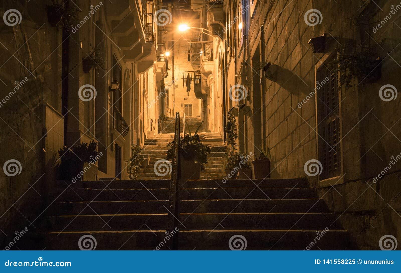 La vue de nuit sur une allée va en haut, les lumières et la balustrade couvertes par de vieux avants de maison Quelques fleurs da
