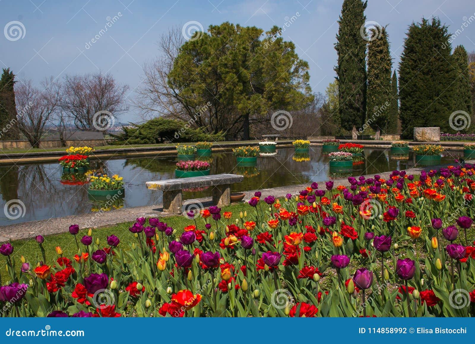 La Vue Du Jardin Romantique Avec Peu De Lac Et Le Vase De ...