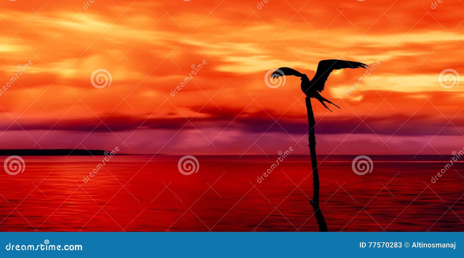 La vue panoramique de la mer et le ciel et un oiseau marin silhouettent le Trinidad-et-Tobago au crépuscule