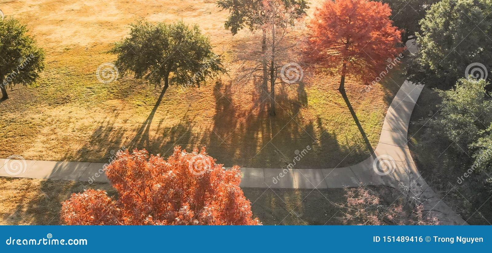 La vue supérieure panoramique a courbé la voie avec les feuilles d automne colorées près de Dallas, le Texas