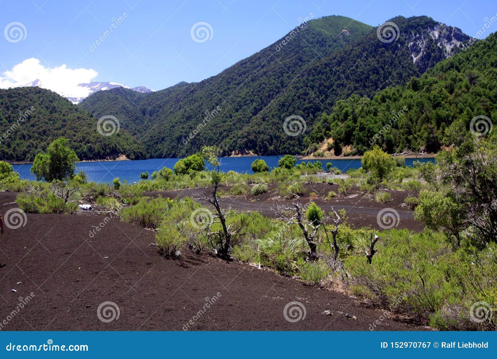 La vue sur le lac bleu profond de cratère entouré par des montagnes avec la neige a couvert Volcano Llaima chez Conguillio NP au