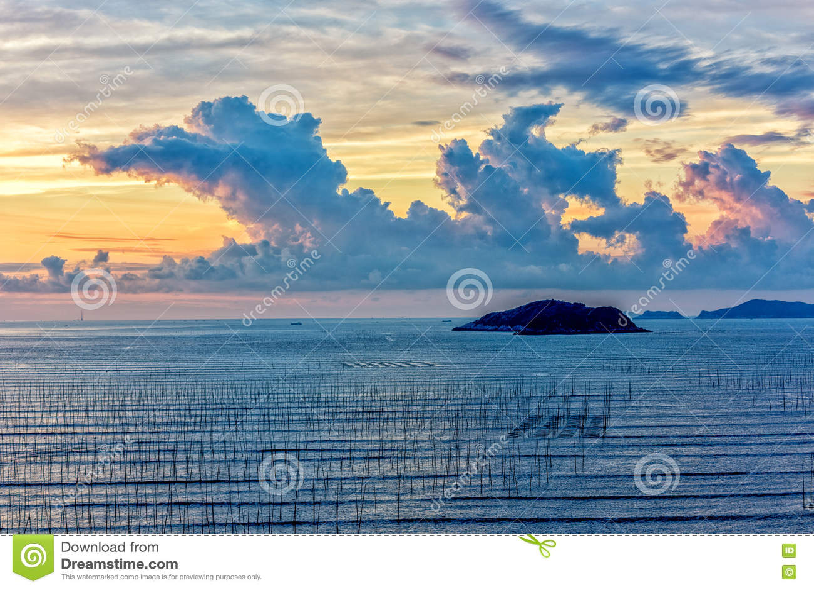 La zone intertidale côtière