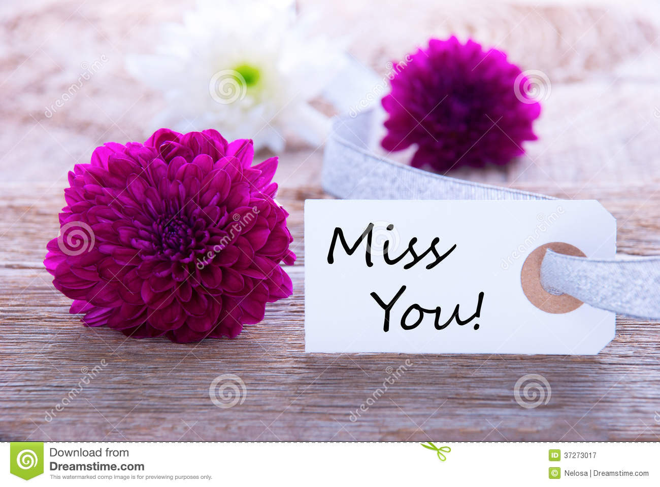 Label With Miss You Royalty Free Stock graphy Image
