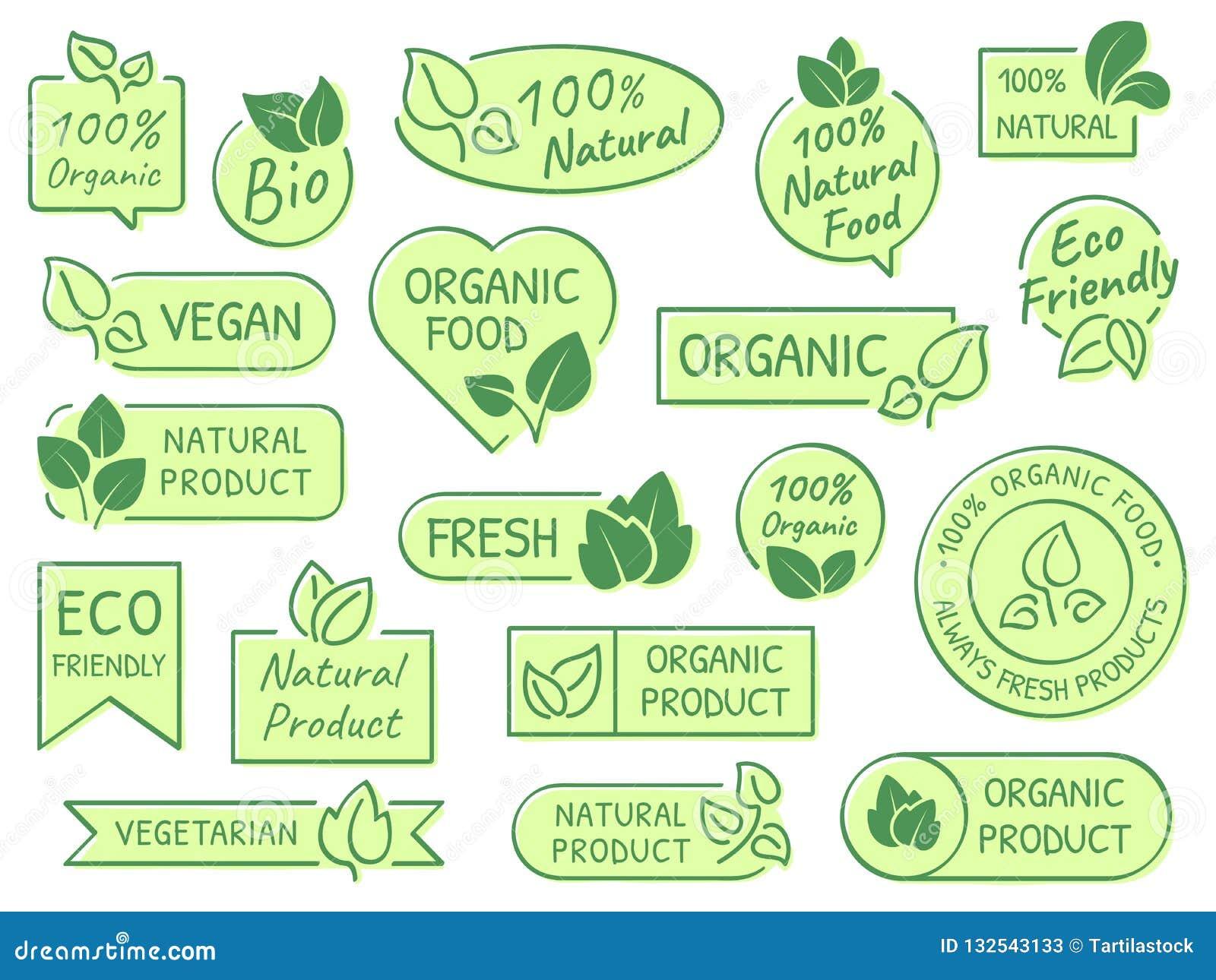 Labels verts de feuilles Produits d Eco, sains et naturels A certifié le label végétarien organique frais de vecteur de nourritur