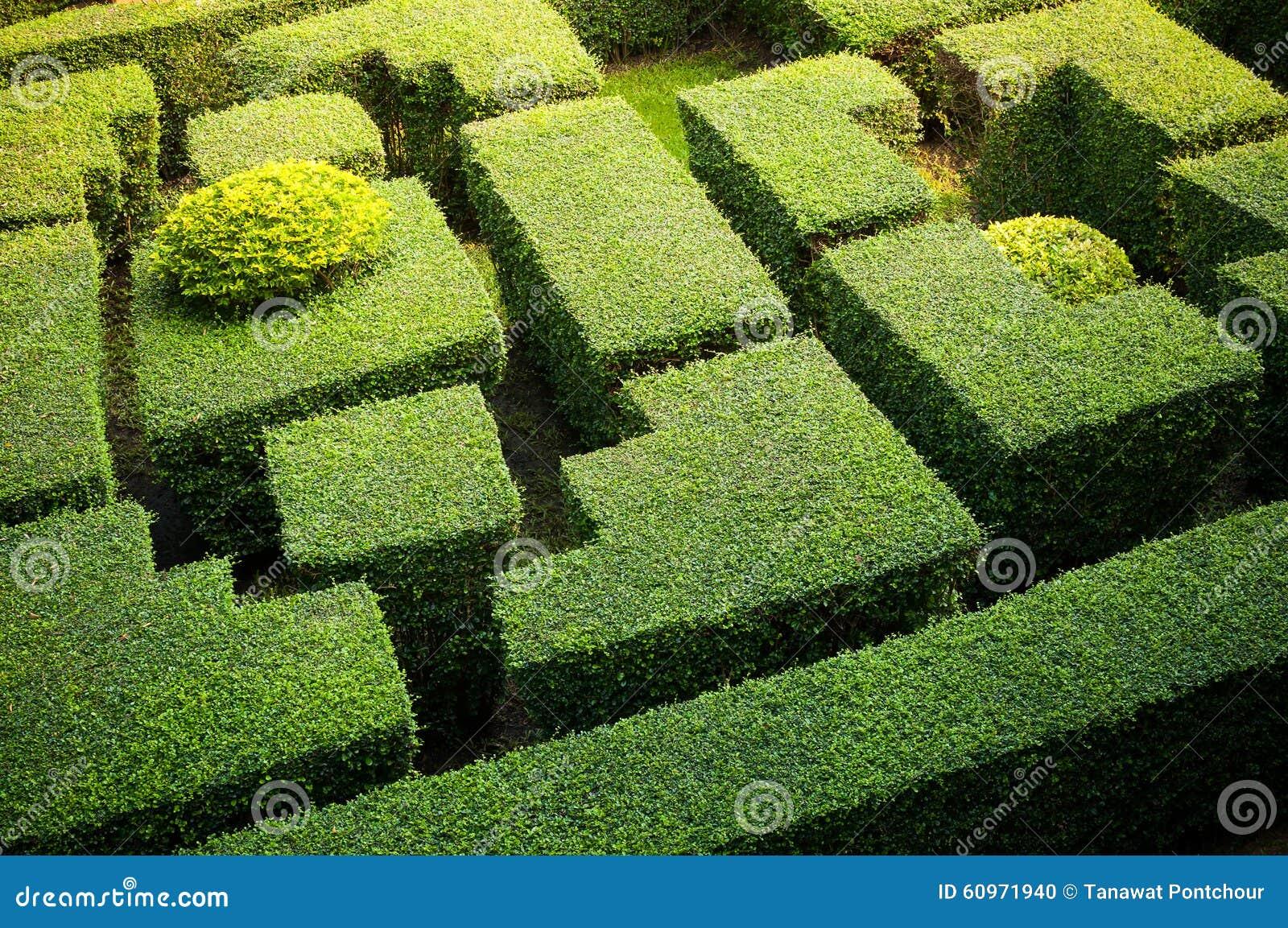 Labiryntu ogród