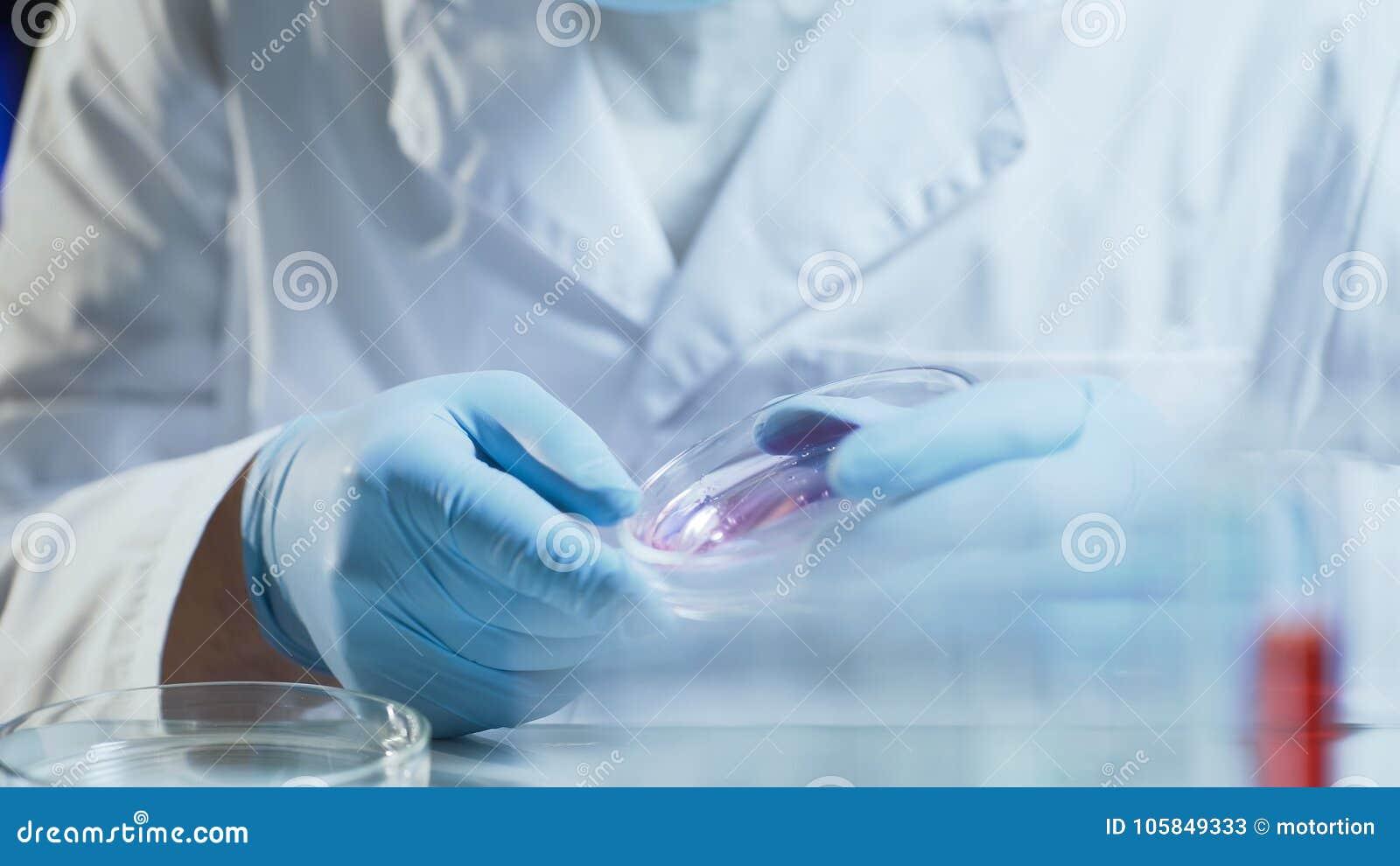 Laboratoriumarbetare som för forskningprovningskonsistens av biologiskt material