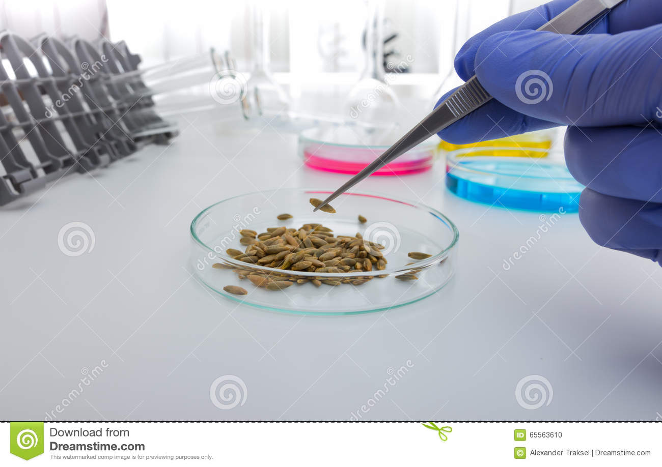 laboratory assistant Laboratory assistant jobs now available in sydney nsw research assistant, laboratory manager, laboratory assistant and more on indeedcom.