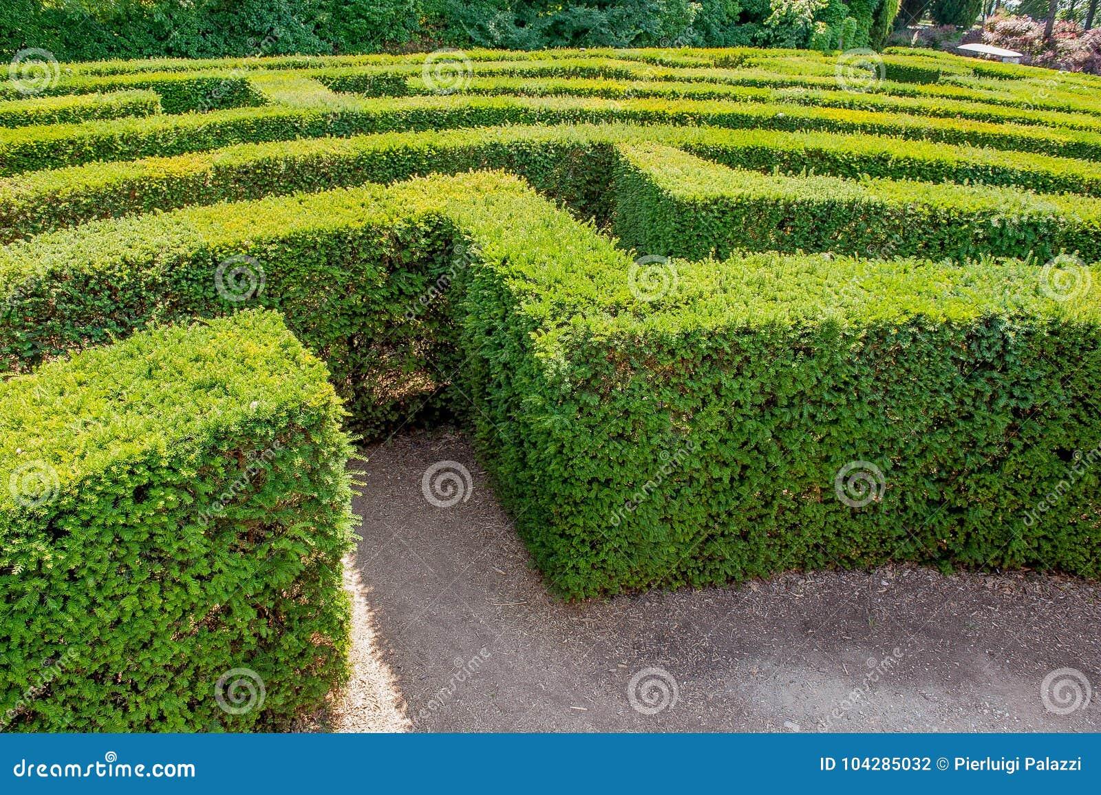 Labyrinth in sigurta