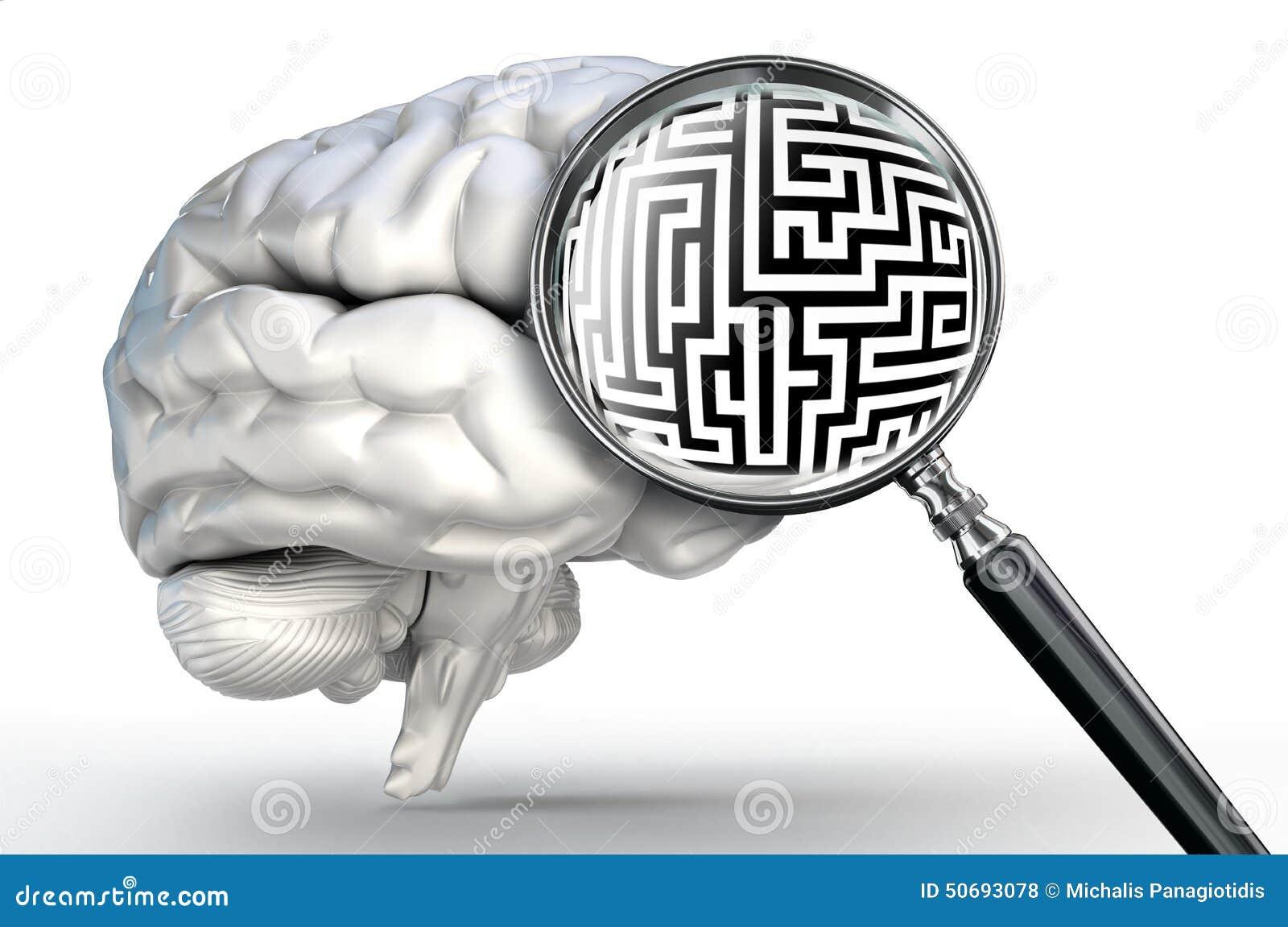 Labyrinthproblem Auf Lupe Und Menschlichem Gehirn Stock Abbildung ...
