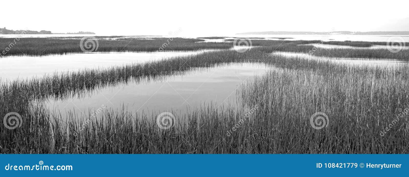 Lac à tête plate chez Ducharme Access près de Polson Montana United States - noir et blanc