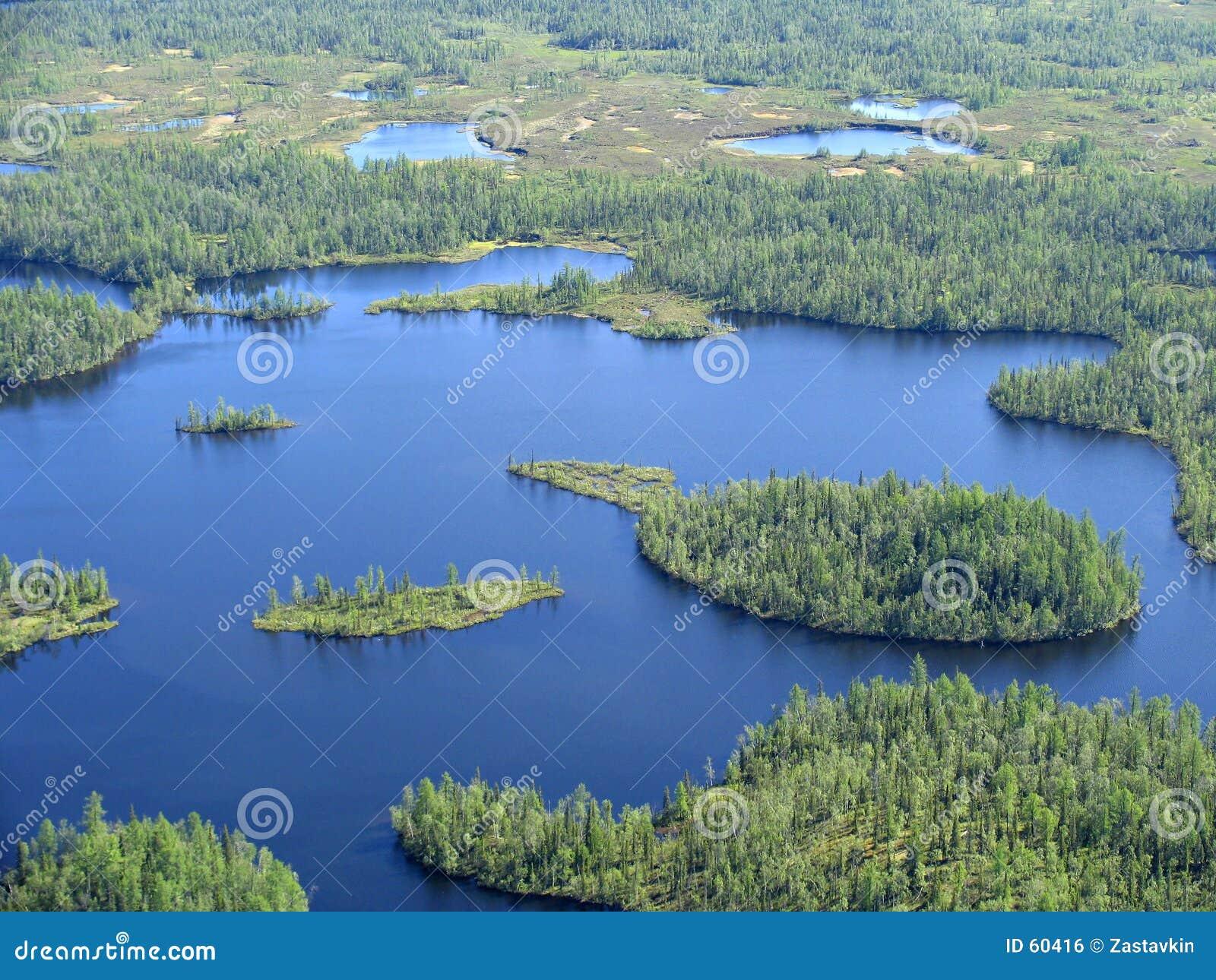 Download Lac photo stock. Image du toundra, russia, mémoire, forêt - 60416
