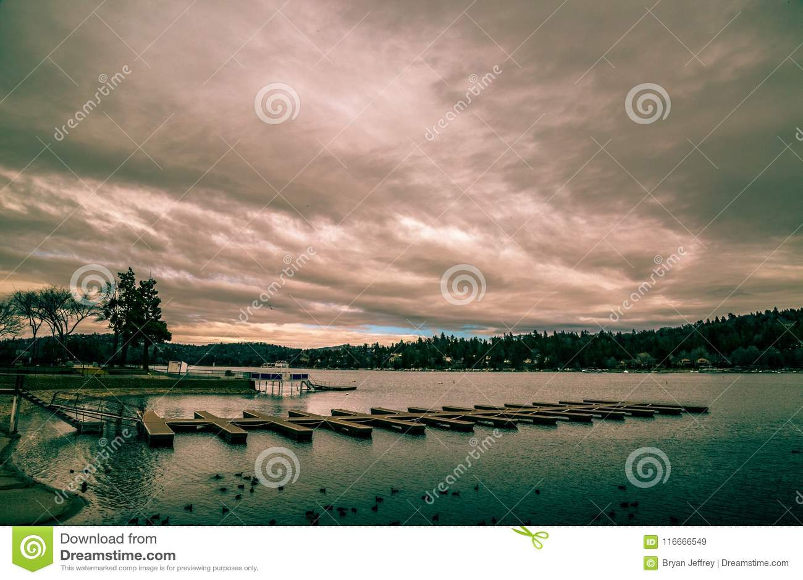 Lac arrowhead