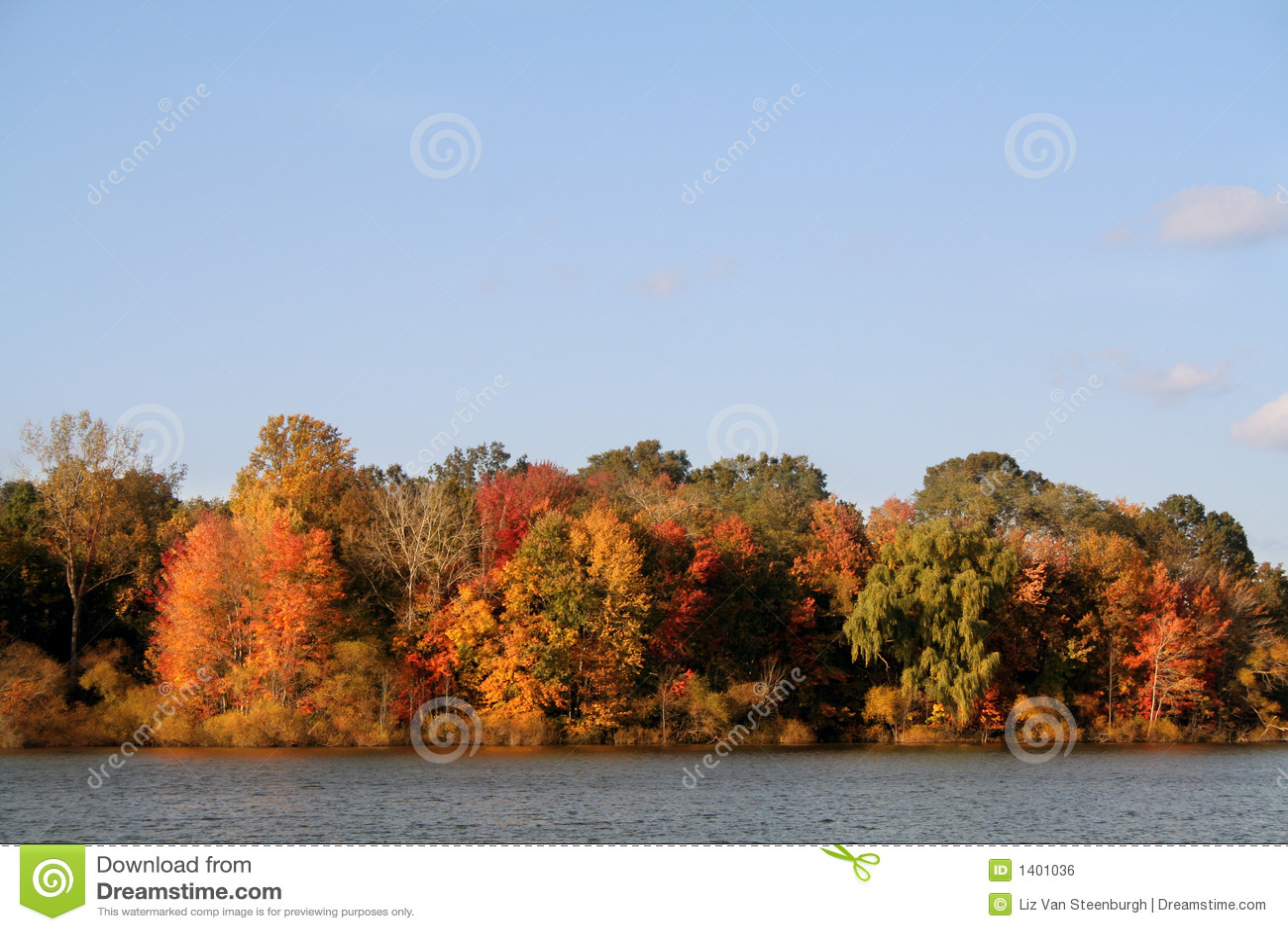 Lac autumn