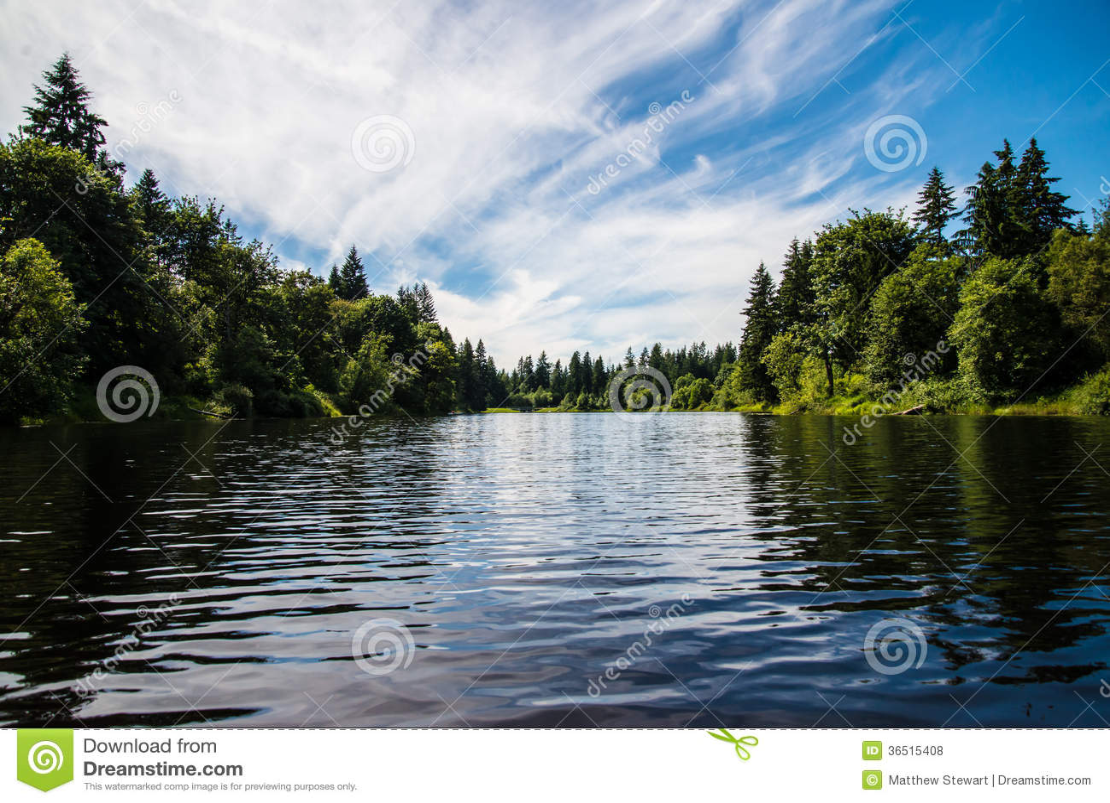 Lac dans les bois