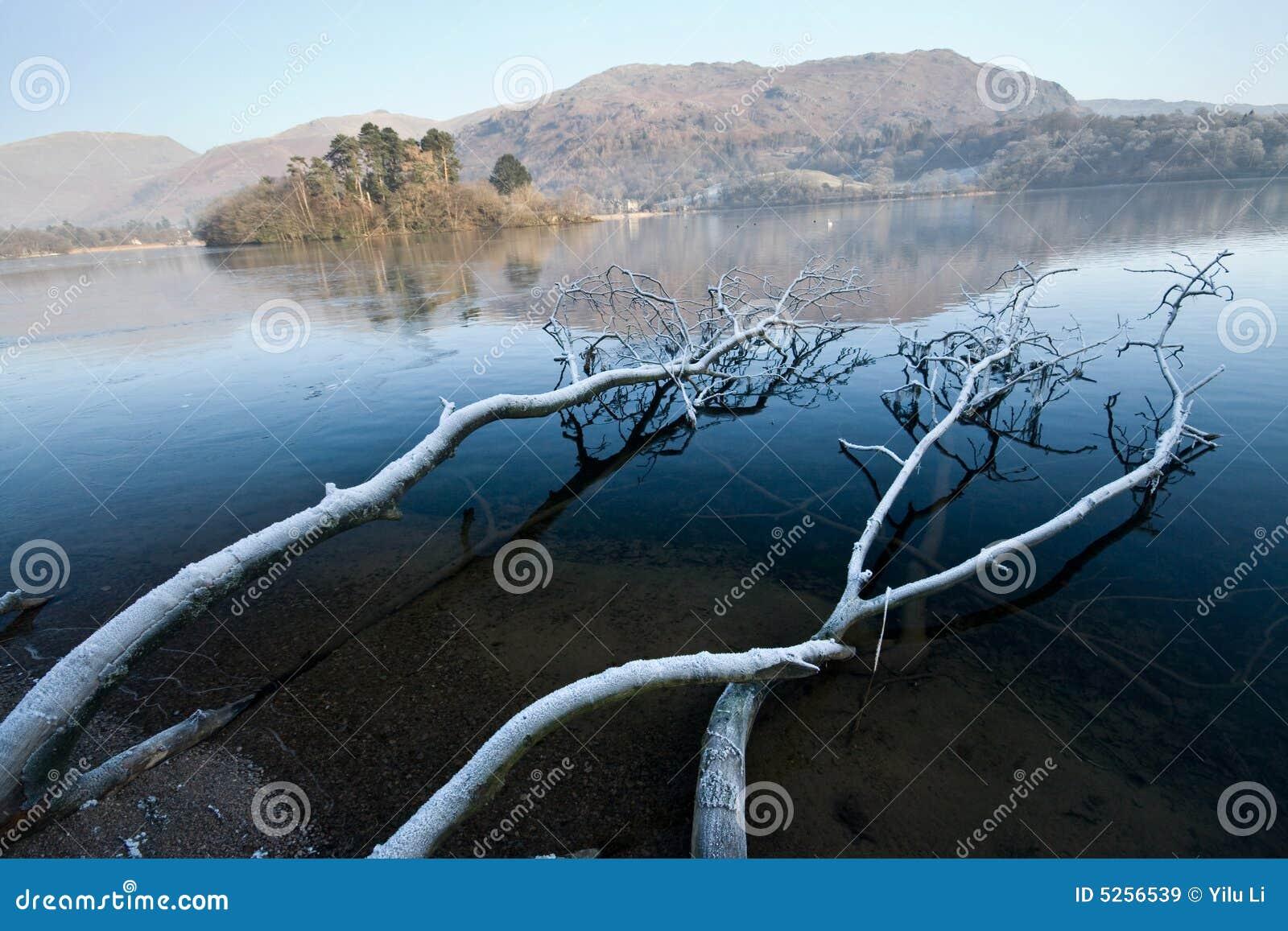 Lac de kaswick de Fronzen et arbre tombé