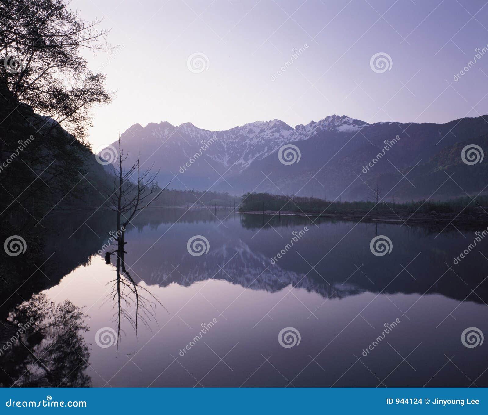 Lac et forêt