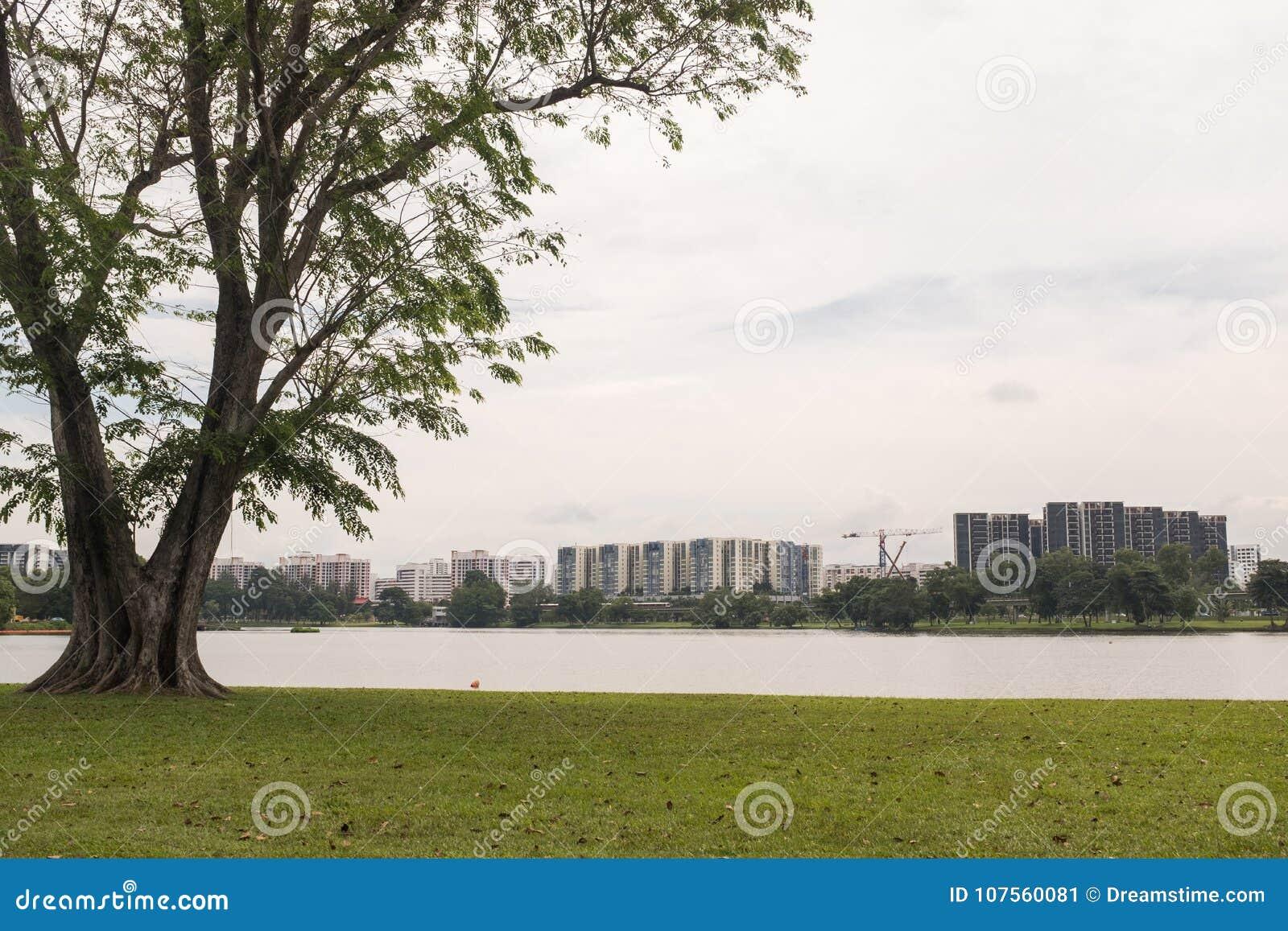 Lac et jardin