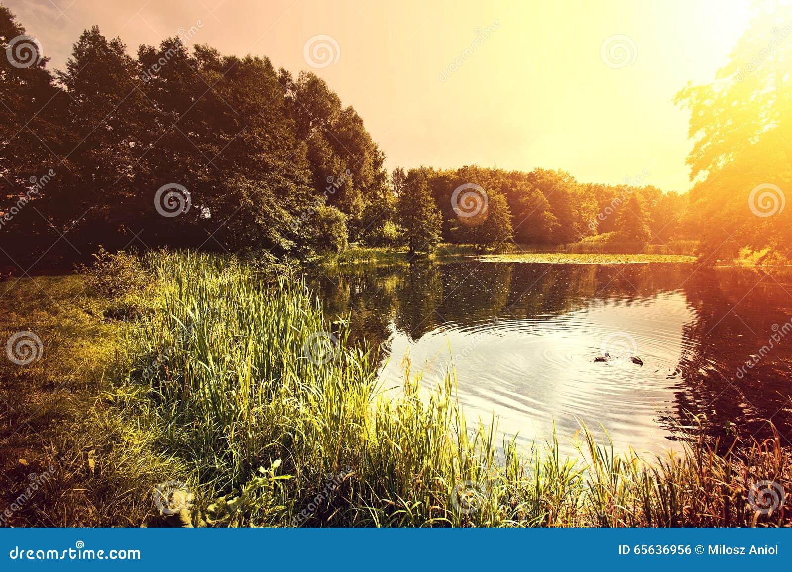 Lac et nature