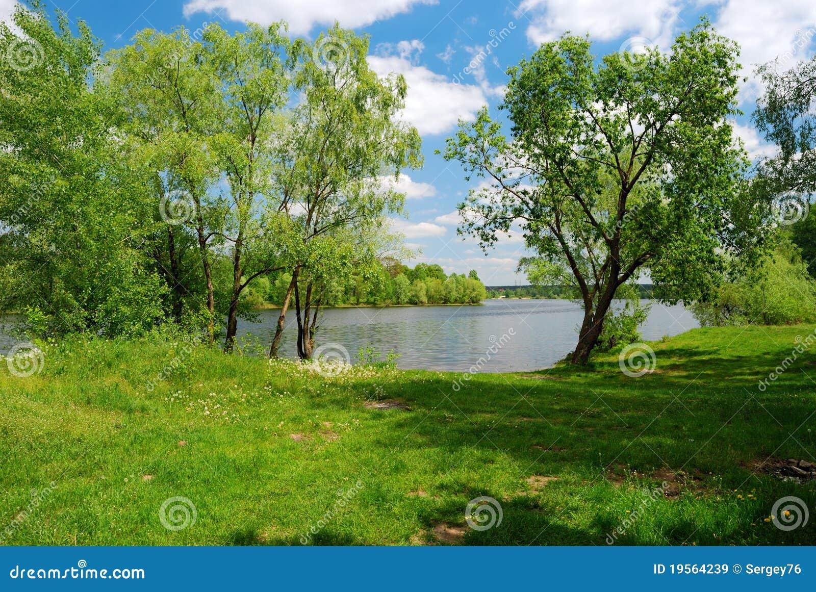 Lac et pré vert en jour ensoleillé