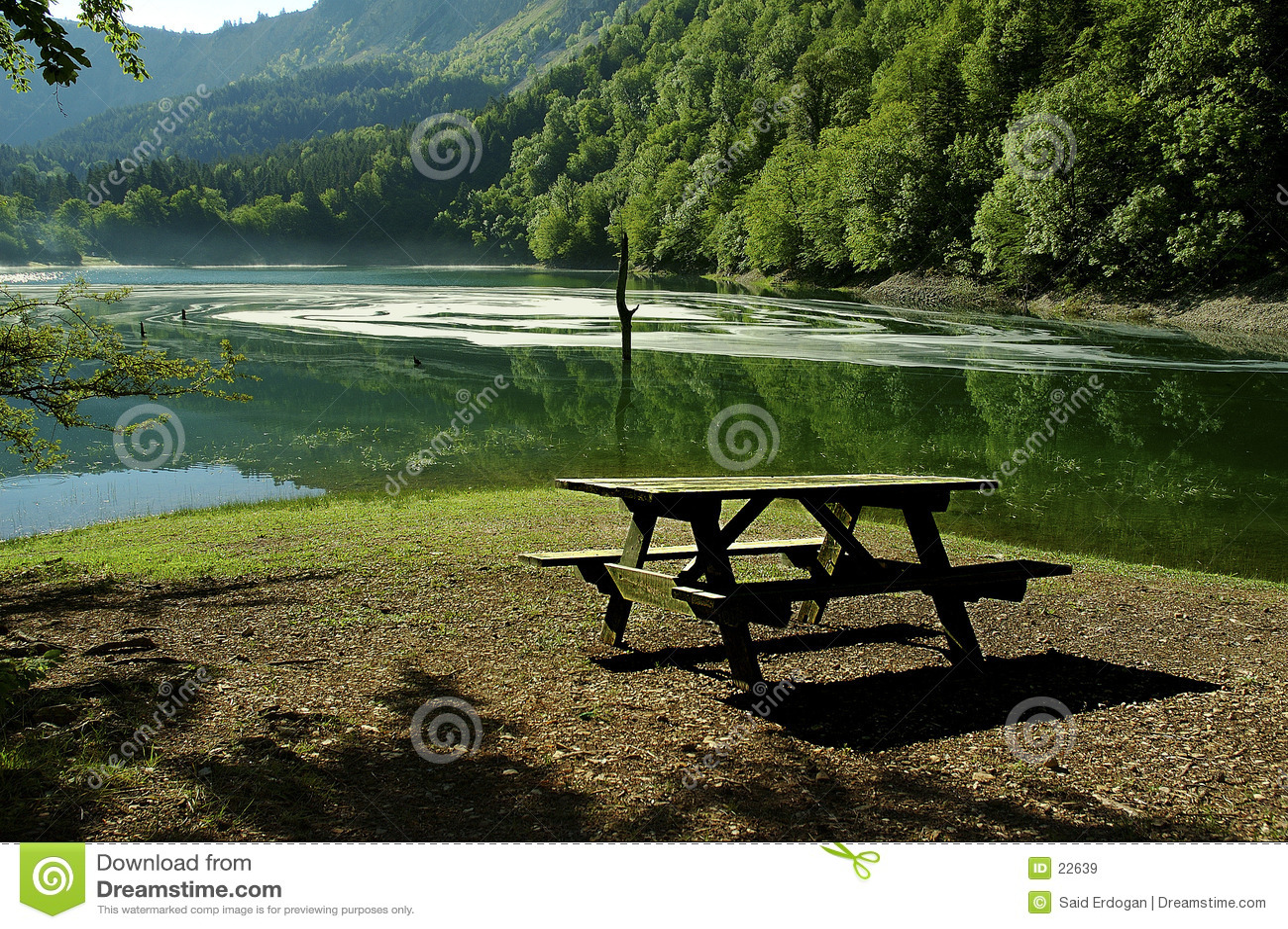 Lac leech
