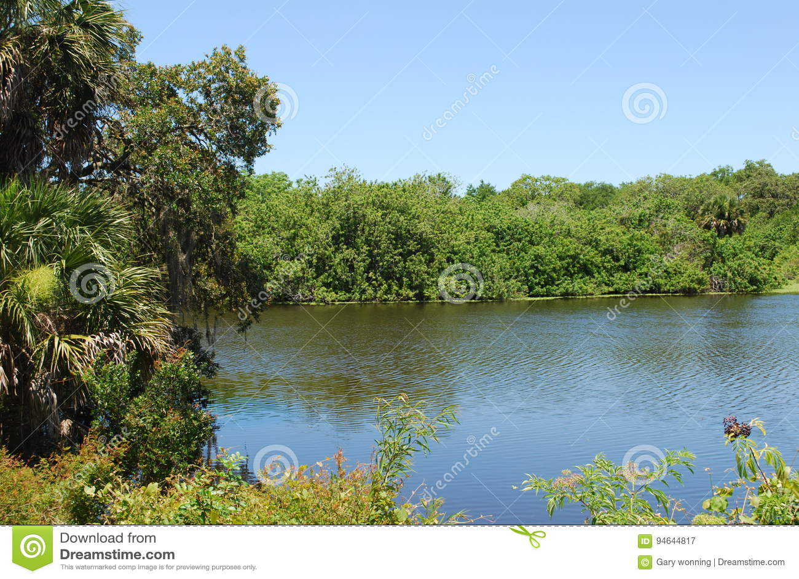 l'eau de Sarasota branchement