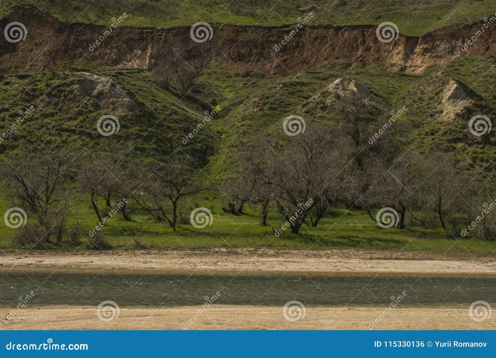 Lac salt et collines vertes et falaise