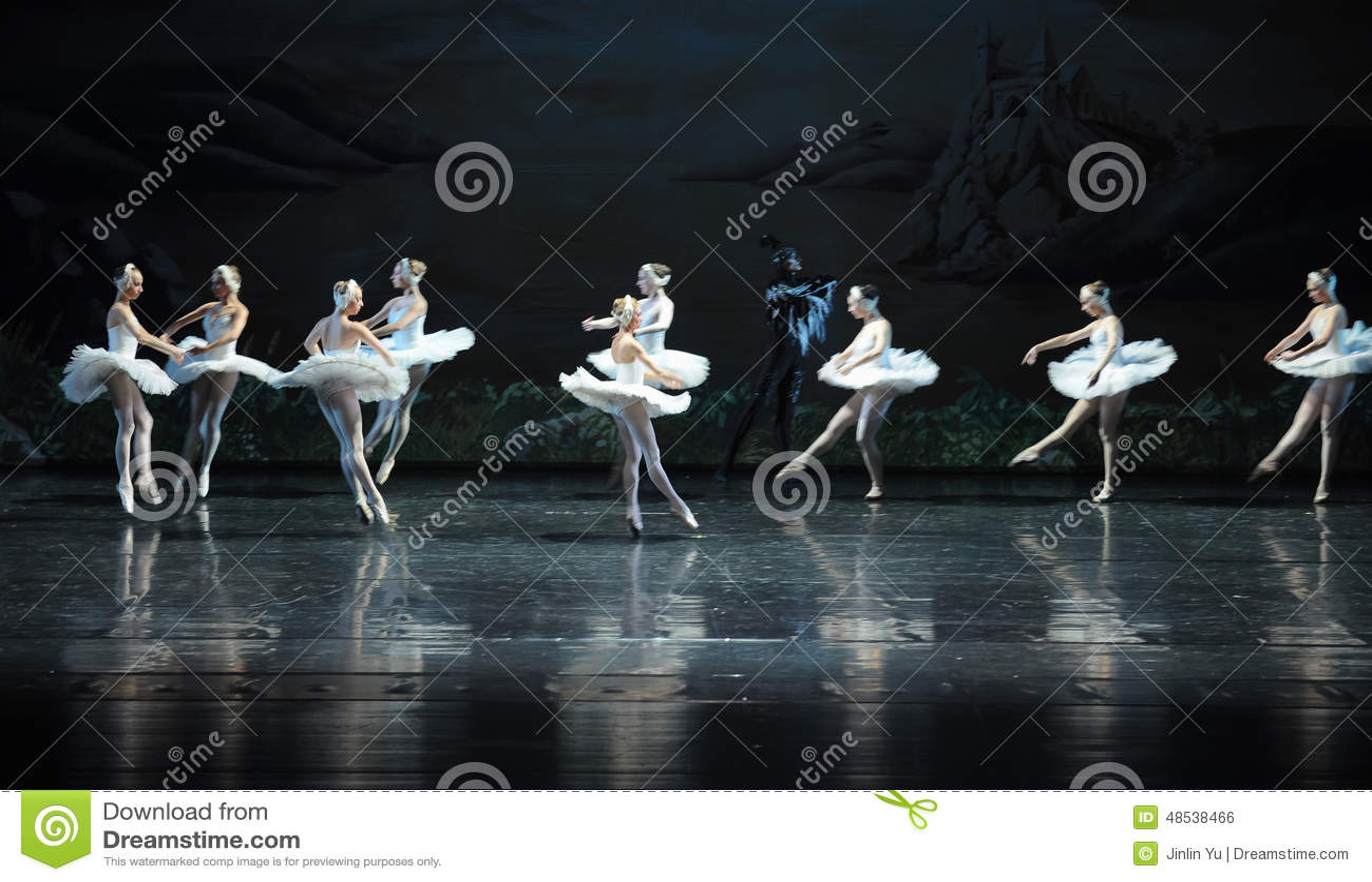 Lac swan de tribu-ballet de cygne