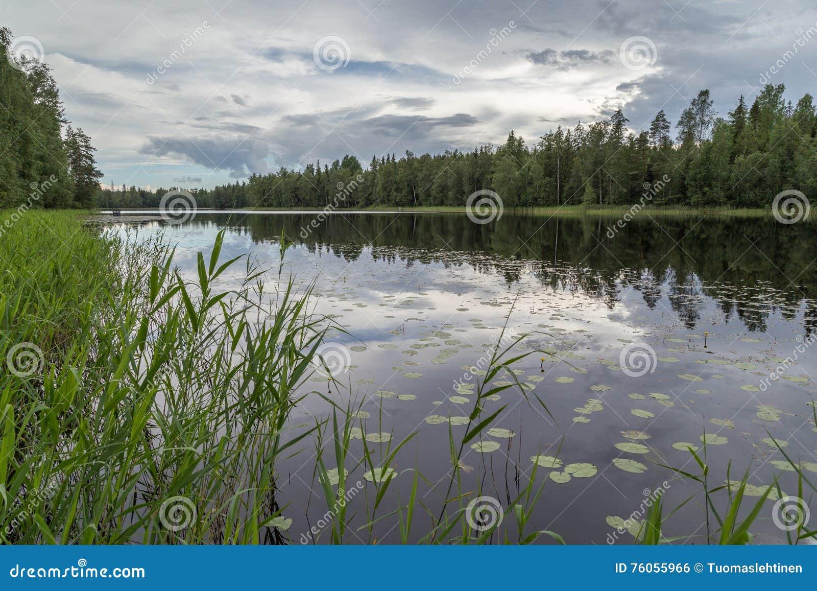 Lac tranquille et calme et réflexion d une forêt