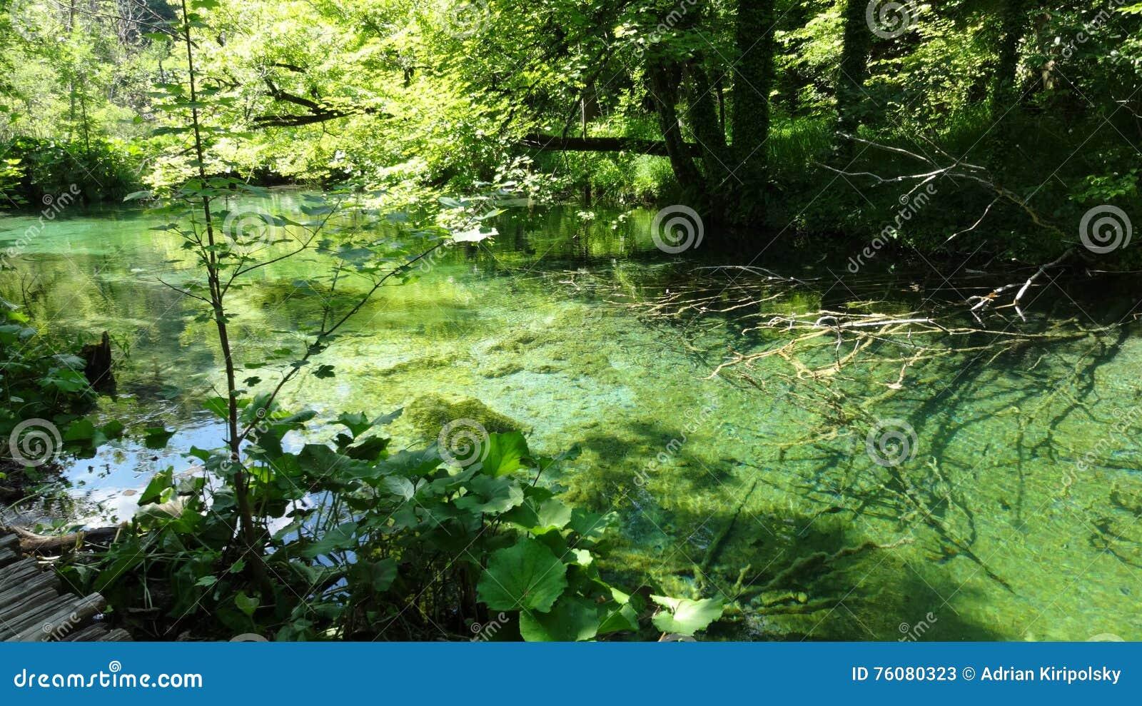 Lacs Plitvice