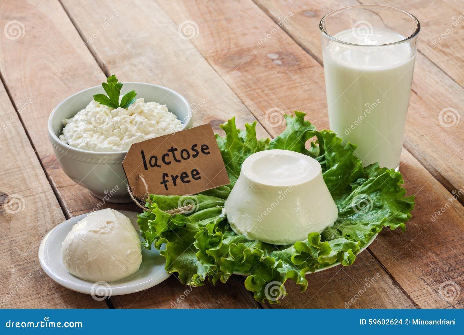 A lactose livra a intolerância