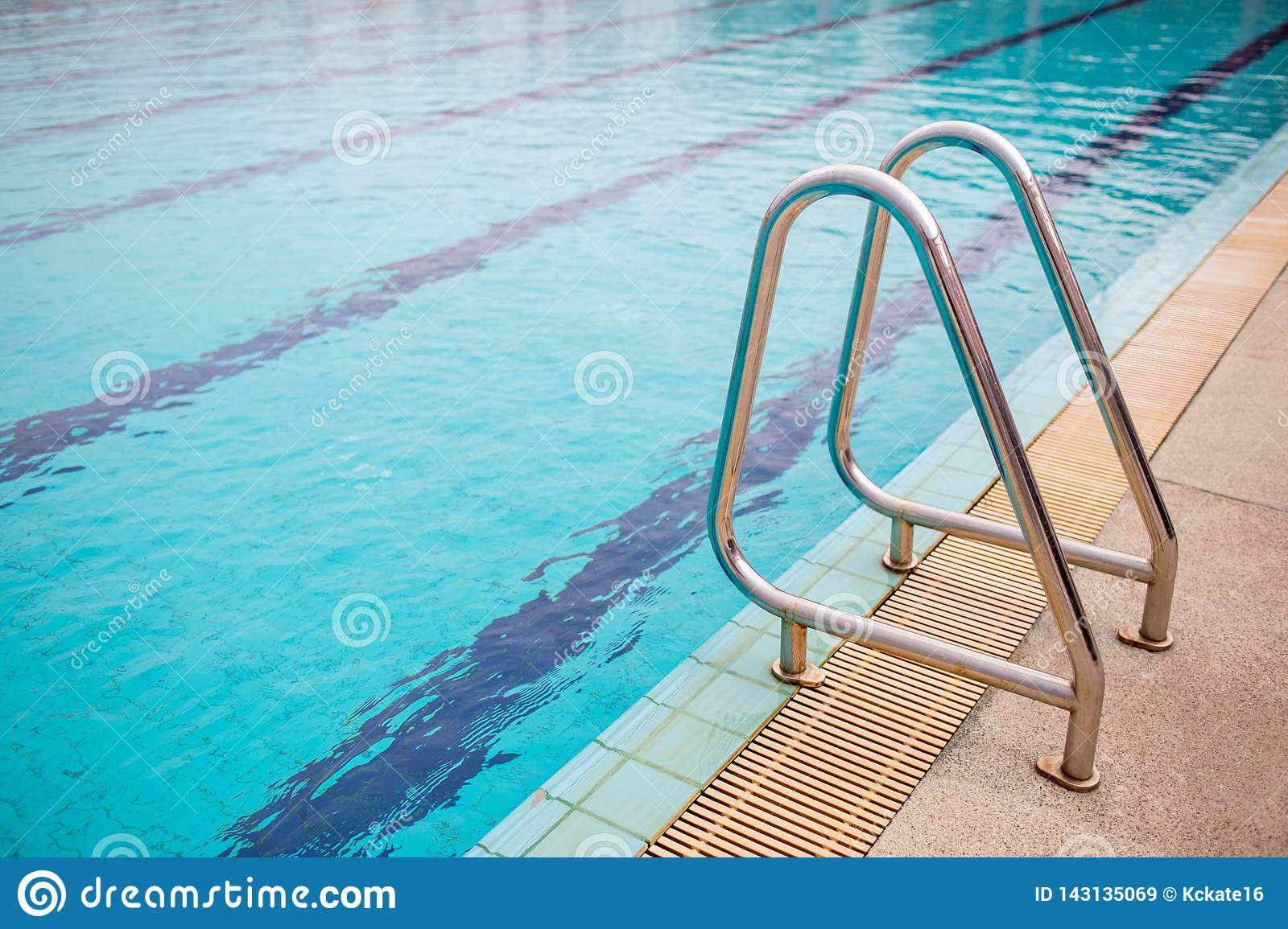Ladder Stainless Handrails For Descent Into Swimming Pool ...