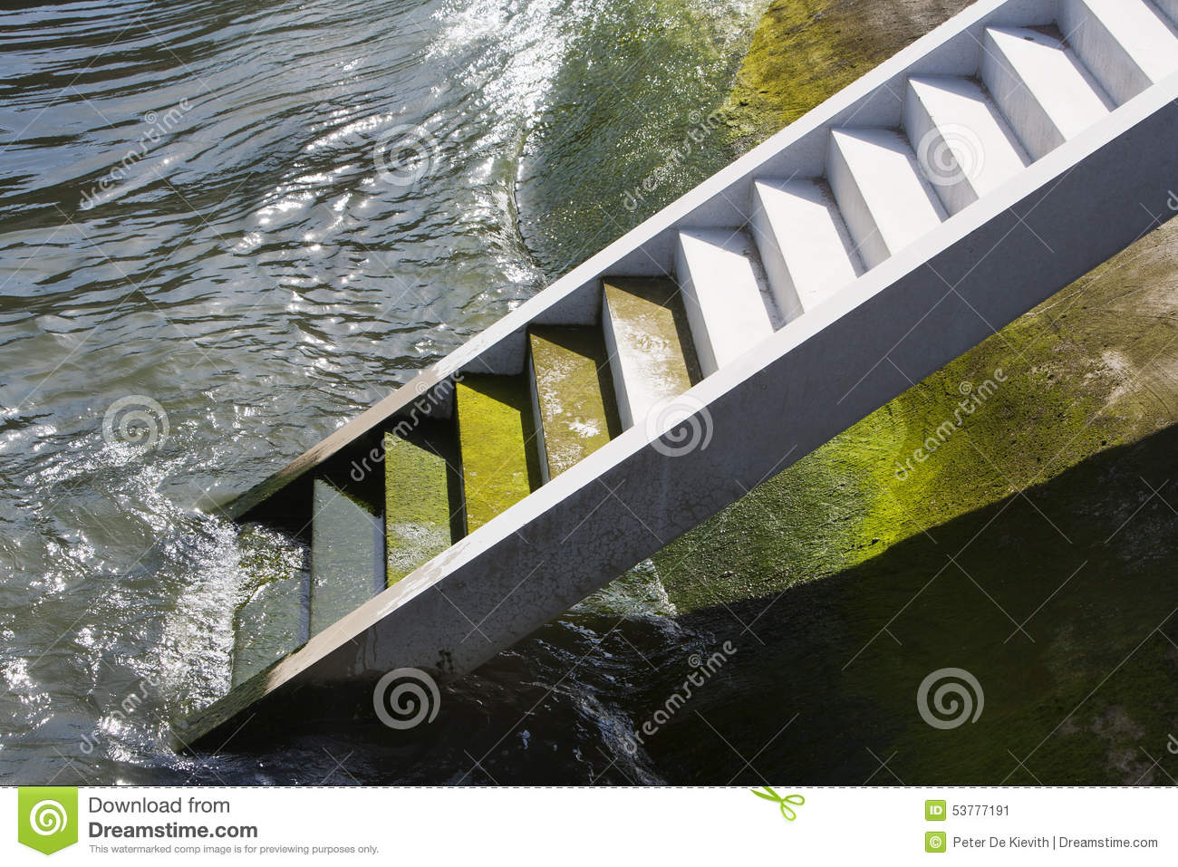 Ladder to success stock image  Image of rotterdam, drowning