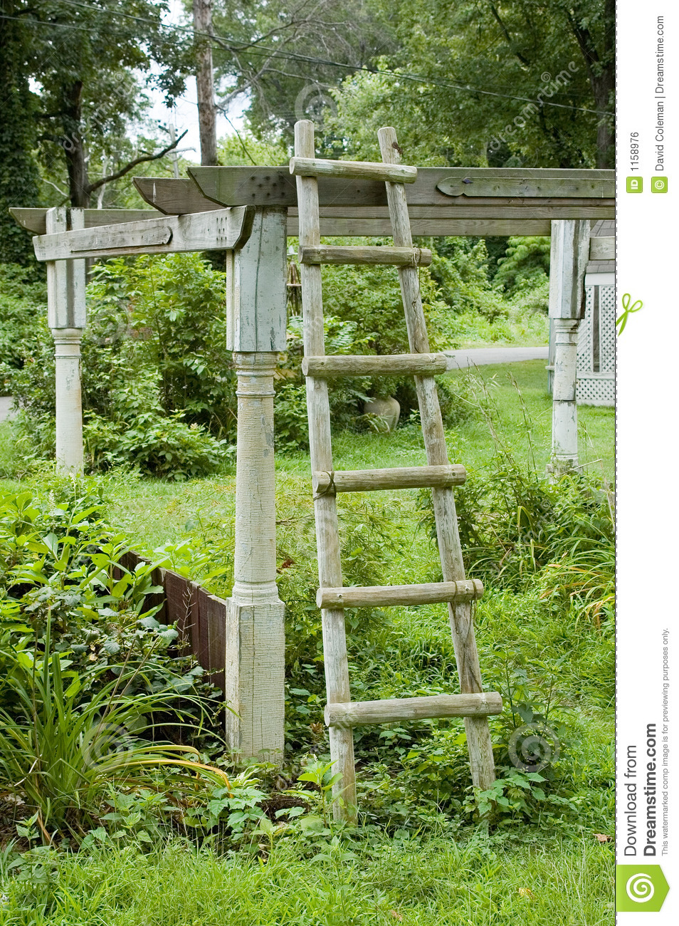 Ladder in Tuin