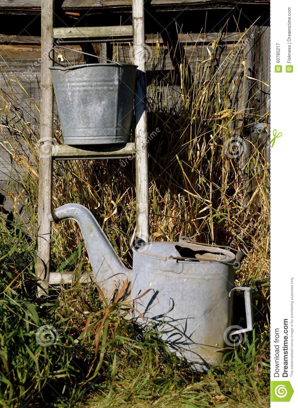 Ladder, water sprinkler, and a pail
