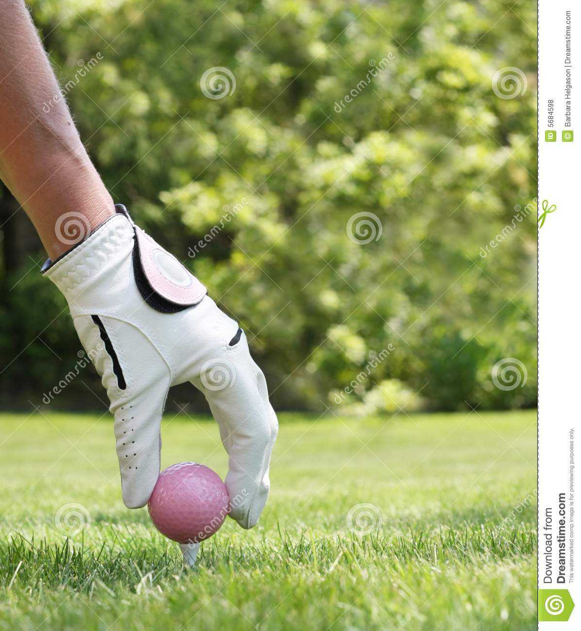 Ladies golf stock photo. Image of recreation, green ...