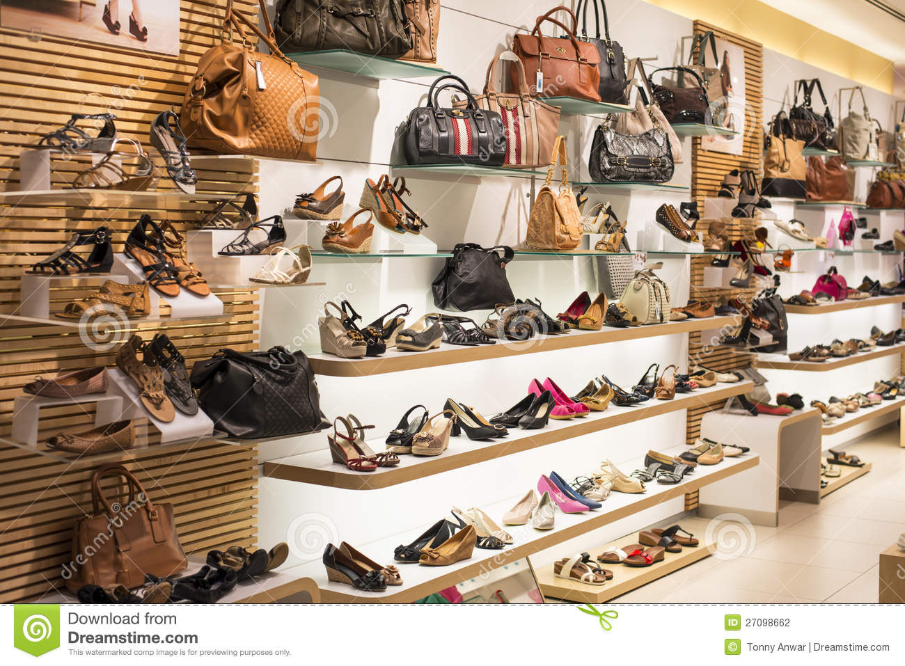 b724372b954d9 Ladies Shoe and Bag stock photo. Image of woman, variety - 27098662