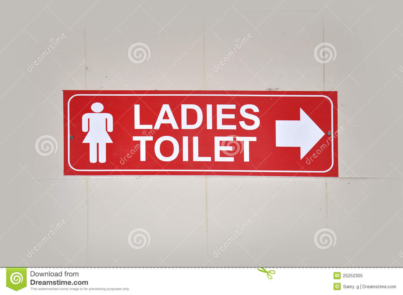 Ladies Toilet Royalty Free Stock Photo