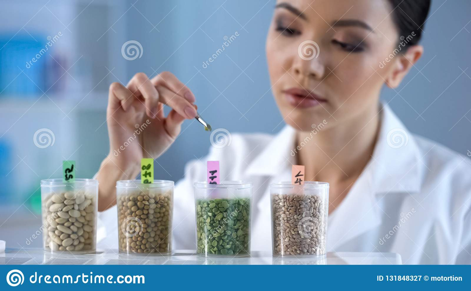 Lady biochemist analyzing pea grain organic food inspection nutrition properties