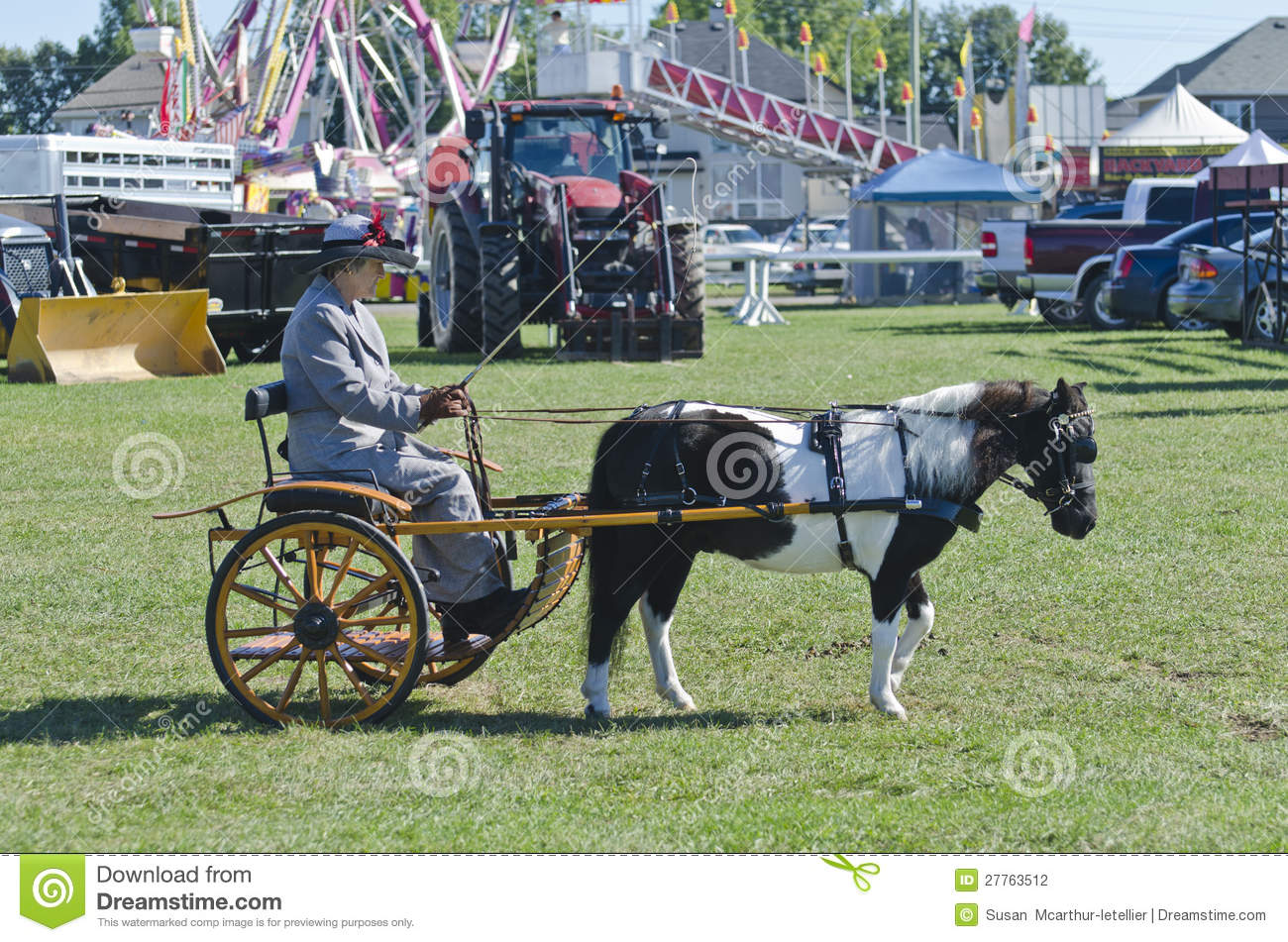 Lady in Buggy with Miniature Horse at Country Fair