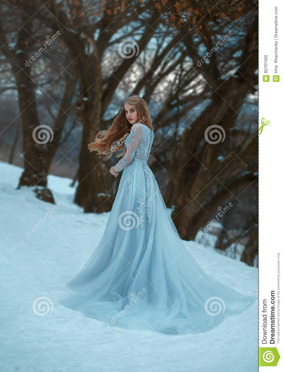 Lady In A Luxury Lush Blue Dress Stock Photo - Image of background ...