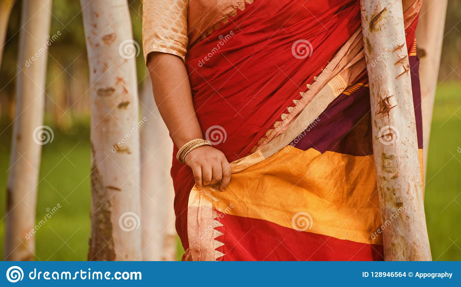 Lady standing wearing stylish saree unique photo