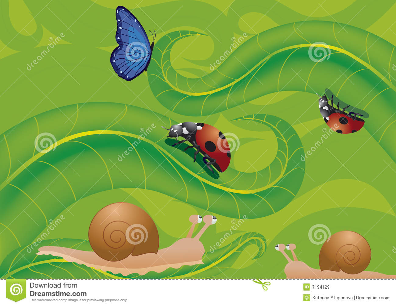 Ladybird Butterfly And Snails Stock Vector - Illustration ...