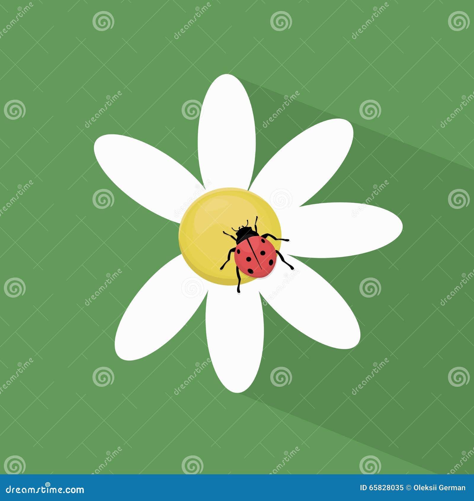 Ladybug на стоцвете